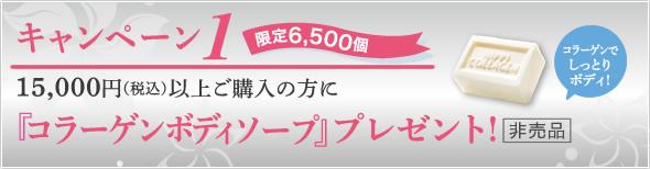 キャンペーン1 15,000円〈税込>以上ご購入の方に『コラーゲンボディーソープ』プレゼント!(非売品)